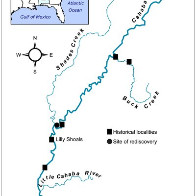 Map of the Cahaba River and select tributaries. Historical collections sites were sampled in August 2011, but Leptoxis compacta was found only at the site of re-discovery.