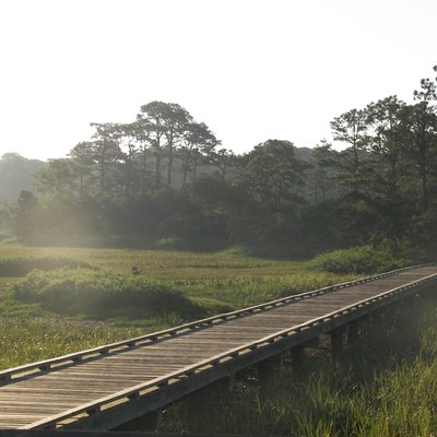 The Marsh Boardwalk at Hunting Island State Park — in Beaufort County, South Carolina.