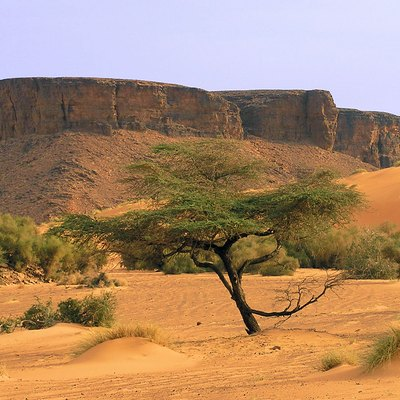 Mountains in the Adrar region. Desert scenes are characteristic of the Mauritanian landscape.