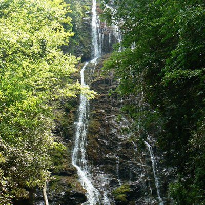Mingo Falls (about 120 feet high) during moderately dry weather, near Cherokee, Swain Co., North Carolina.