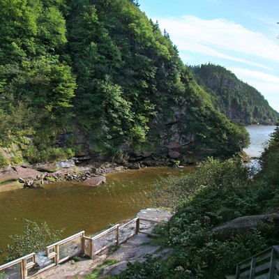 Fundy National Park, New Brunswick, Canada. Point Wolfe.