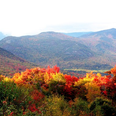 The Forests In New Hampshire In Autumn