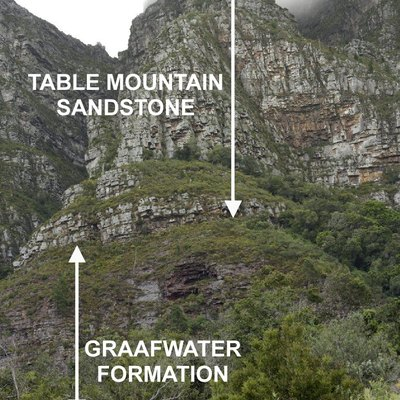 A view of eastern cliffs of Table Mountain as seen from Newlands Forest, above the University of Cape Town. The lowermost layer of rock (which rests on the basement granite, obscured by the forest) is the Graafwater Formation. Above it the Table Mountain Sandstone, or Peninsula Formation, forms the towering cliffs which characterize the Cape Peninsula Mountain chain.