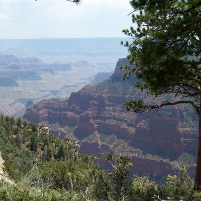 North Rim of the Grand Canyon by David Jolley 2005.