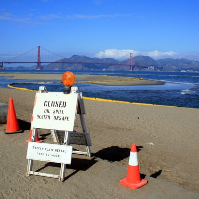 Cosco Busan Oil Spill Along Crissy Field In The San Francisco Bay. About 58,000 Gallons Of Oil Spilled From South Korea-Bound Container Ship, Cosco Busan After Striking Delta Tower Of The San Francisco-Oakland Bay Bridge In Dense Fog On 11/07/07. The Yellow Tubes Are Called Boom And They Are Used To Protect Beaches. Golden Gate Bridge Is Seen At Background.