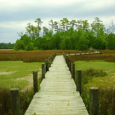 Boardwalk at the Palmetto Islands County Park in Mount Pleasant, South Carolina, United States
