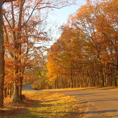 Roadway to Lindsey Lake in David Crockett State Park, located a half mile west of Lawrenceburg, Tennessee.