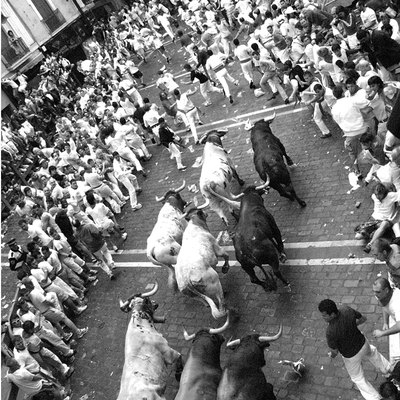 Running of the bulls during Sanfermines in Iruñea - Pamplona, Spain.