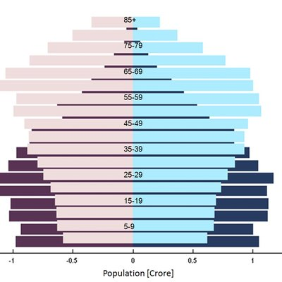 Population Pyramid in South India 2011 -51