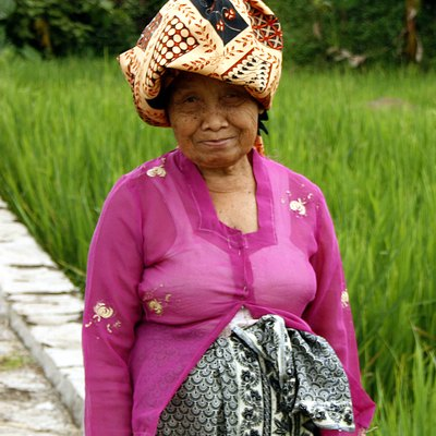 A friendly Sundanese elderly woman on her way at ricefield paddy, wearing kebaya, kain batik and batik headcloth at Leles, Garut, West Java, Indonesia.