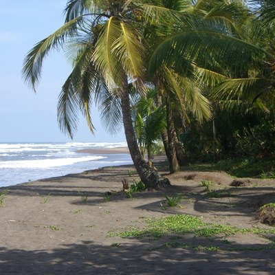 I took this picture while I stayed at Tortuguero, Costa Rica. This is showing the dark sand due to volcanic ash and a nice view Caribbean sea.