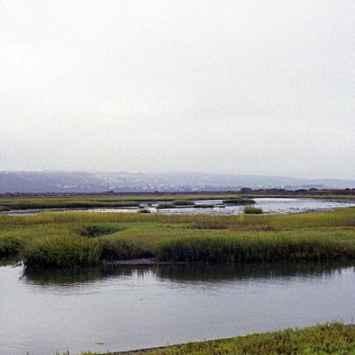 Tijuana River Estuary with Tijuana Hills in the back