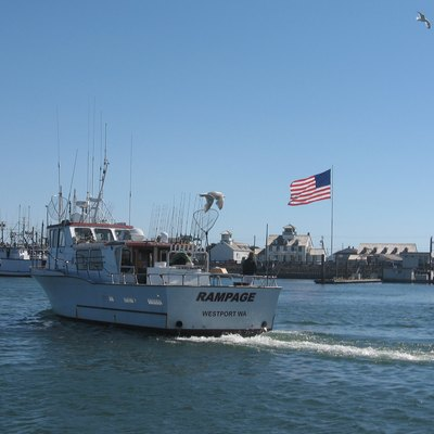 A typical fishing boat returning to the Westpost Marina.