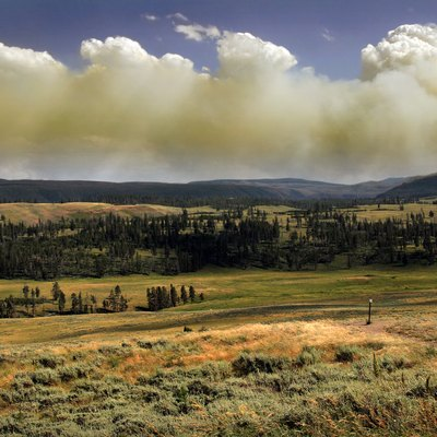 Wildfire In Yellowstone National Park Produces Pyrocumulus Cloud