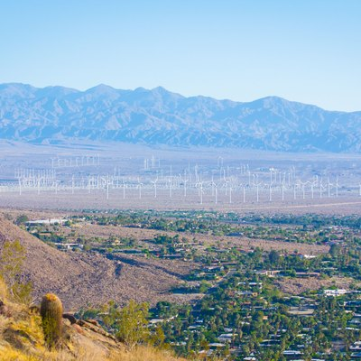 A wind farm in Palm Springs, California, north of the Museum Trail