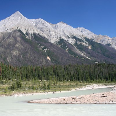 Chancellor Peak in Yoho National Park of Canada. Towering above Kicking Horse Valley. The river visible is Kicking Horse river. Photo taken from Trans-Canada Highway. The greyish areas of the forests are from a prescribed fire in 2005