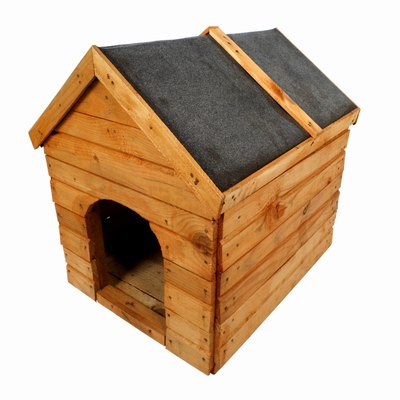 Cedar dog houses have pros and cons.
