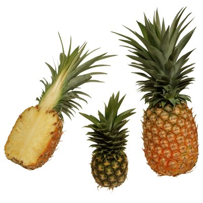 Pineapple juice is a rich source of protease.
