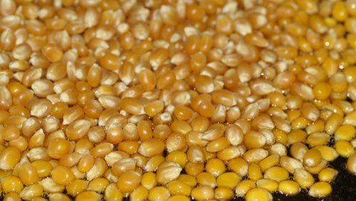<p>Once air-popped, these kernels only contain 31 calories per cup.</p>