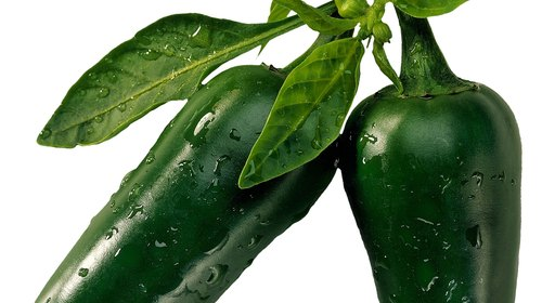 <p>Sprays made with hot peppers repel many insects.</p>