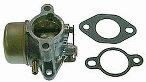How to Clean A Small Engine Carburetor | Home Guides | SF Gate