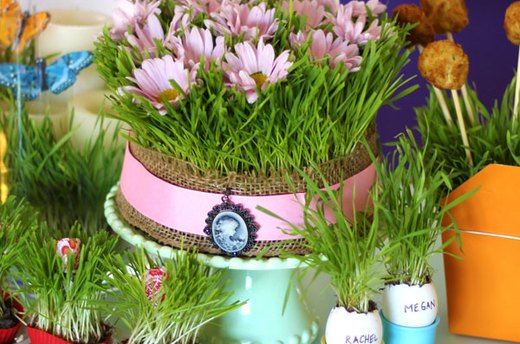 The Wonders of Wheatgrass: 5 Decorating Ideas for Your Spring Table