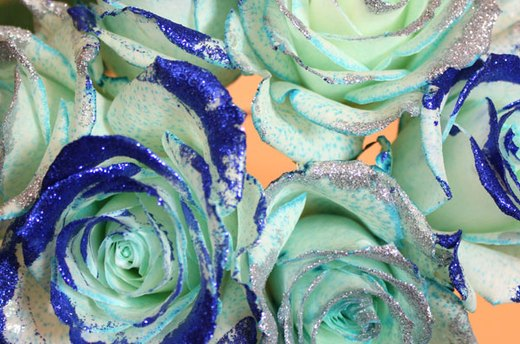 Hanukkah Roses with Glitter