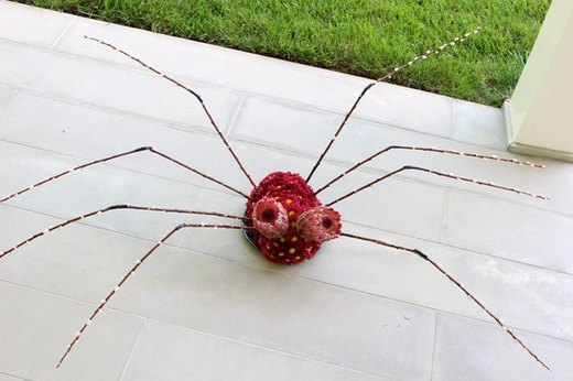Spider Centerpiece from Flowers