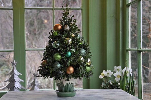 Make a Last-Minute Christmas Boxwood Tree