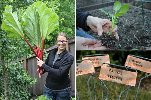 17 Tips to Get a Vegetable Garden Growing