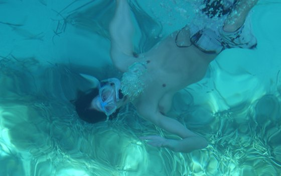 If you have a snorkel, bring it along! Some of Florida's best attractions are found underwater.