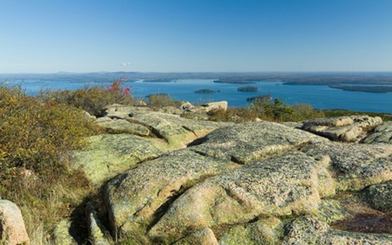 Bus tours take visitors to the summit of Cadillac Mountain.