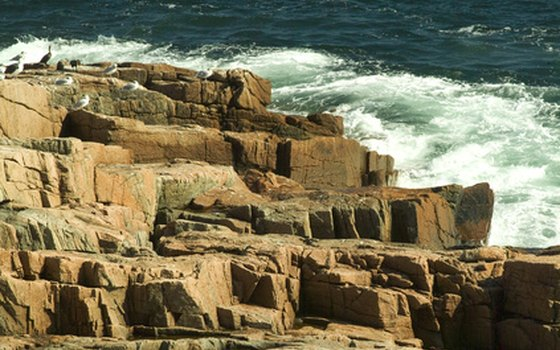 Acadia's rocky coast reveals tide pools when the surf recedes.