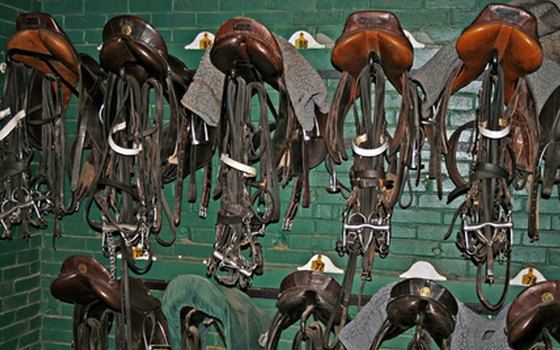 Some facilities provide saddles and tack for rent, but your horse is likely to be more comfortable in familiar gear.