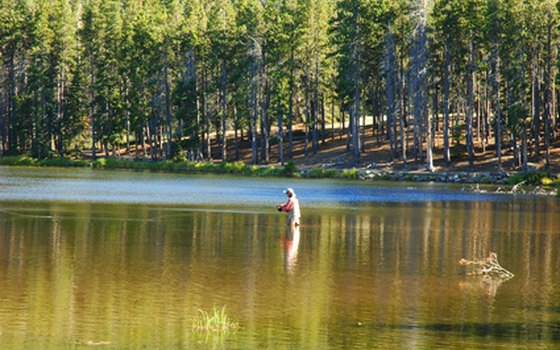 Wyoming is heaven for the fly fisherman.
