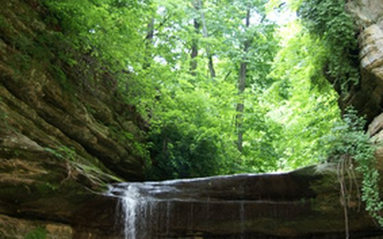 French Canyon at Starved Rock State Park is one of many awe-inspiring rock formations.