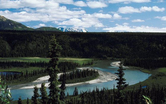 The Nenana River flows through Denali National Park.