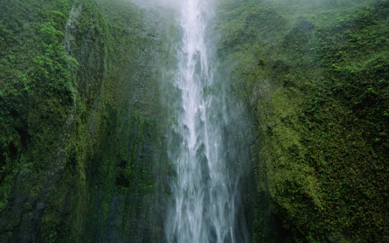 The mountainous regions of Maui feature waterfalls and rain forests.