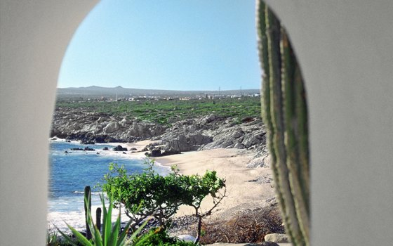 In Cabo, the rolling Pacific waves meet rocky desert landscapes.