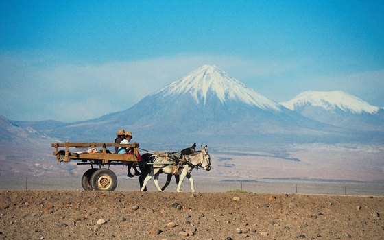 The Atacama Desert is one of the world's driest places.