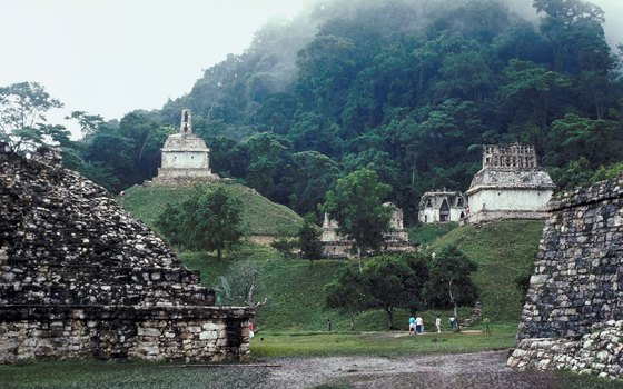 Only a small portion of the pyramid city of Palenque has been excavated.