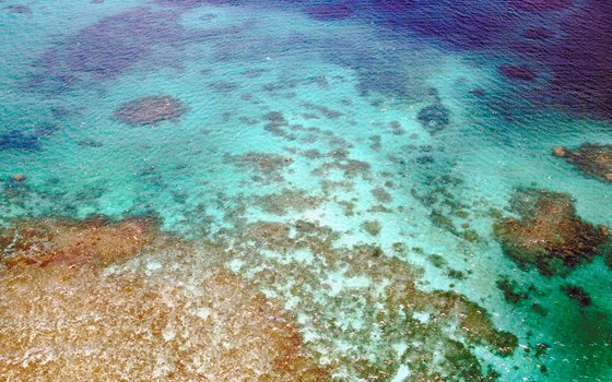 The Great Barrier Reef off Queensland is the world's largest reef network.