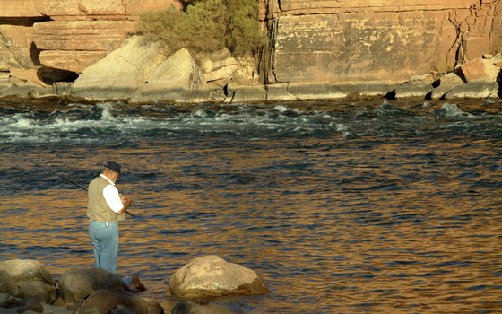 Fish from shore or book an angling tour on Lake Powell.