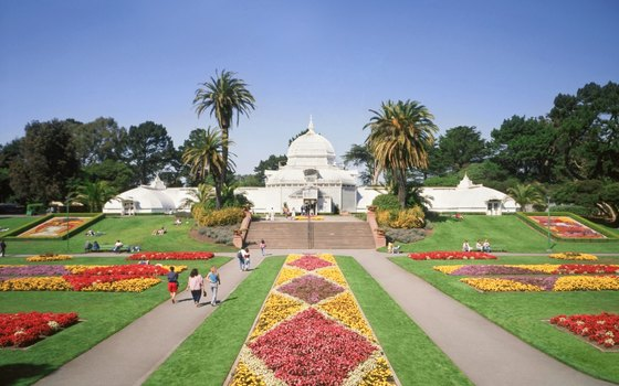 Golden Gate Park houses a Conservatory of Flowers that older children might enjoy.
