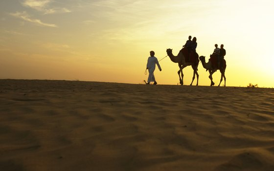 Visit the desert outside the city of Abu Dhabi.