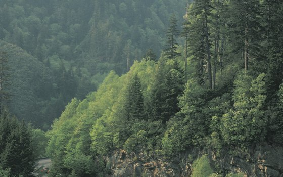 Traveling Smoky Mountains roads treats travelers to spectacular views.
