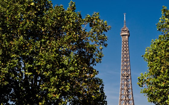 Paris has plenty of sightseeing opportunities to keep solo travelers busy.