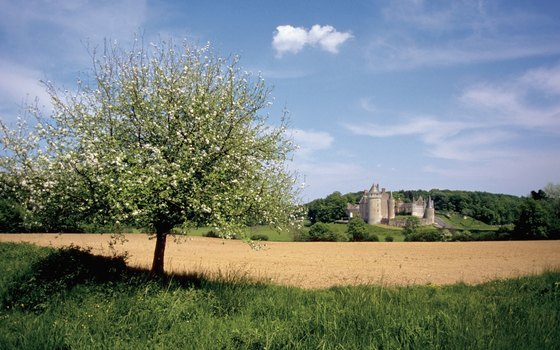 Loire's castles dot the valley's classical landscape.