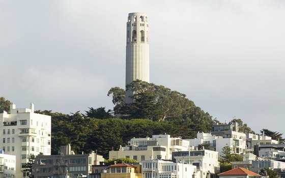 Enjoy 360 degree views from atop Coit Tower.