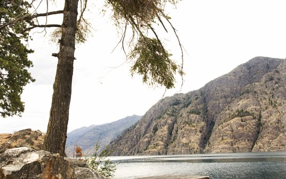 Lake Chelan spans 50.5 miles in northern Washington.